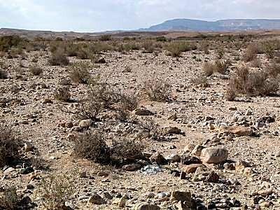 Desierto de Juda