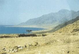 Area del Cruce del Mar Rojo