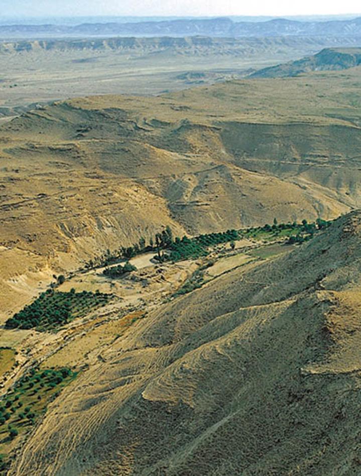Valle en el desierto, Wadi