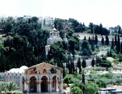 Jardines de Jetsemani – Jerusalen